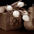 Tulips With Pear I by Tom Mc Nemar