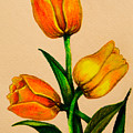 Tulips by Zina Stromberg