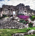 Tulum Temple Ruins No.2 by Tammy Wetzel