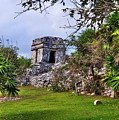 Tulum Watchtower by Tammy Wetzel