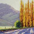 Tumut Poplars by Graham Gercken
