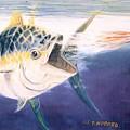 Tuna To The Lure by Bill Hubbard