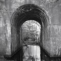 Tunnel  by Keith Gray