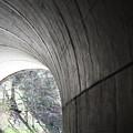Tunnel by Teresa Doran