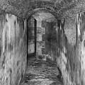 Tunnel by Tom Gari Gallery-Three-Photography