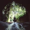 Tunnel Walk by Steve Williams