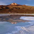 Tunupa Volcano Reflected In Salar De Uyuni At Twilight Bolivia by James Brunker