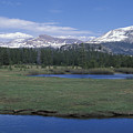 Tuolomne Meadows In June by Stan and Anne Foster