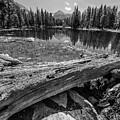 Tuolumne Meadows In Monochrome by Michael Tidwell