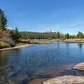 Tuolumne River And Meadows, No. 2 by Belinda Greb