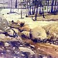 Tuolumne Stream by Donald Maier