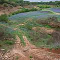 Turkey Bend Park Texas Rough Road by JG Thompson