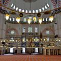 Turkey, Instabul Mosque  by Elba Martinez