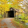 Turkey Jim's Covered Bridge by Wayne Toutaint