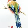 Turquoise-browed Motmot  Bird by Pornthep Piriyasoranant