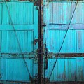 Turquoise Doors by Edmund Akers