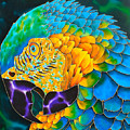 Turquoise Gold Macaw  by Daniel Jean-Baptiste