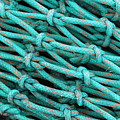 Turquoise Nets by Clare Bevan