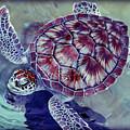 Turtle by Ariane Moshayedi