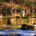 Turtle Creek by E R Smith