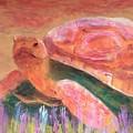 Tortoise by Donald J Ryker III