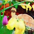 Turtle In The Tulips by Donna Bentley