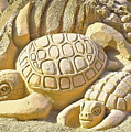 Turtle Sand Castle Sculpture On The Beach 999 by Ricardos Creations