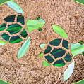 Turtles by Linda Covino