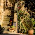 Tuscan Backyard by Wolfgang Stocker