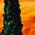 Tuscan Cypress by Keith Gantos
