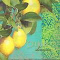 Tuscan Lemon Tree - Citrus Limonum Damask by Audrey Jeanne Roberts