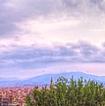 Tuscan Summer by Stephen Settles