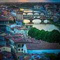 Tuscan Sunbeams by Inge Johnsson