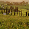 Tuscan Sunset by Jenni Alexander