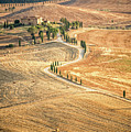 Tuscan View by Delphimages Photo Creations