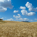 Tuscany Landscape With The Town Of Pienza, Val D'orcia, Italy by JR Photography