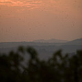 Tuscany Sunset 1 by Luigi Barbano BARBANO LLC
