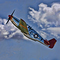 Tuskegee Mustang Red Tail by Tommy Anderson