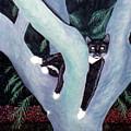 Tuxedo Cat In Mimosa Tree by Karen Zuk Rosenblatt