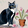 Tuxedo Cat Sitting By The Pink Tulips  by Frances Gillotti