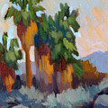Twilight At Indian Canyons  by Diane McClary