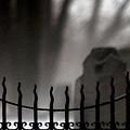 Twilight Beyond Grace by Linda Shafer