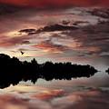 Twilight Flight by Jessica Jenney