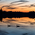 Twilight Lake Swim New Jersey by Terry DeLuco