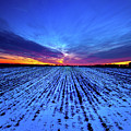 Twilight Rows by Phil Koch