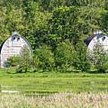 Twin Barns In Spring by Marv Vandehey