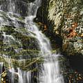 Twin Falls - Nc by Shari Jardina