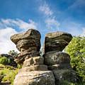 Twin Rocks At Brimham by David Head