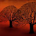 Twin Trees by Debi Payne