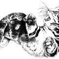 Twisted Kitten by David Kleinsasser